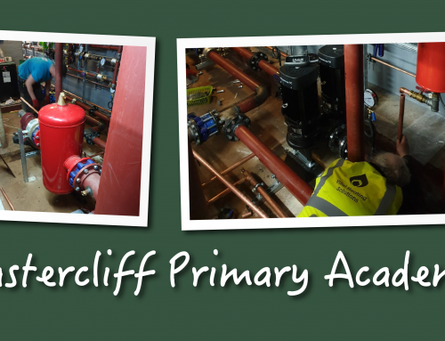 Castercliff Primary Academy, Nelson